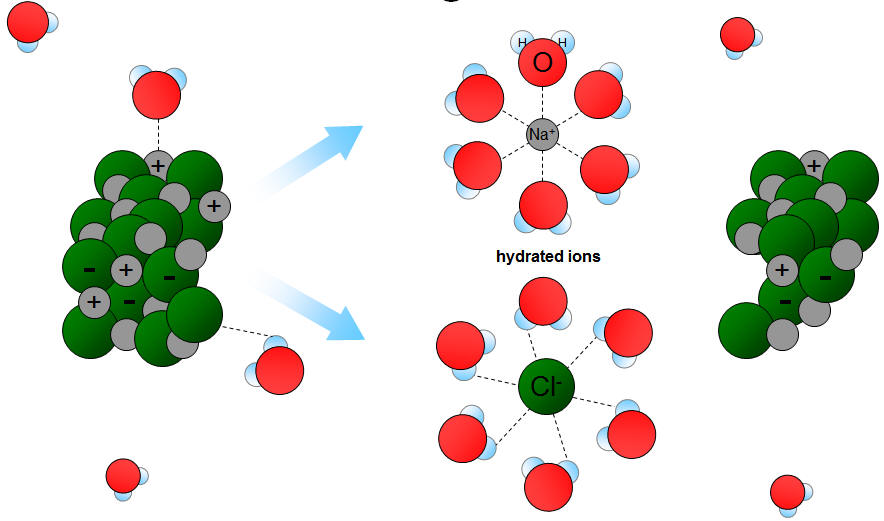 Like Dissolves Like and Molecule Ion Attractions